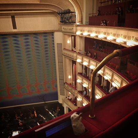 Un petit rat à l'opéra de Vienne