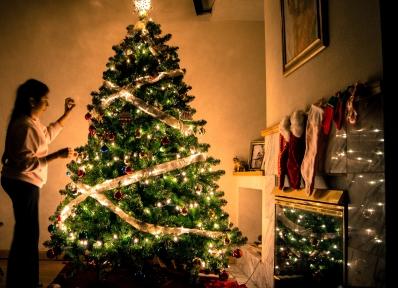 christmas, christmas tree